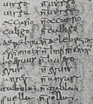 Codice dell'Appendix Probi (particolare - i numeri 121-131).